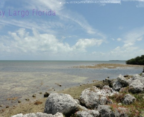 What to See and Do in Key Largo Florida