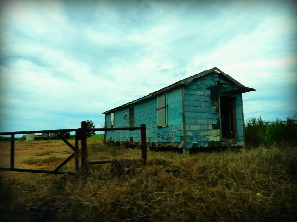 Sblue shack