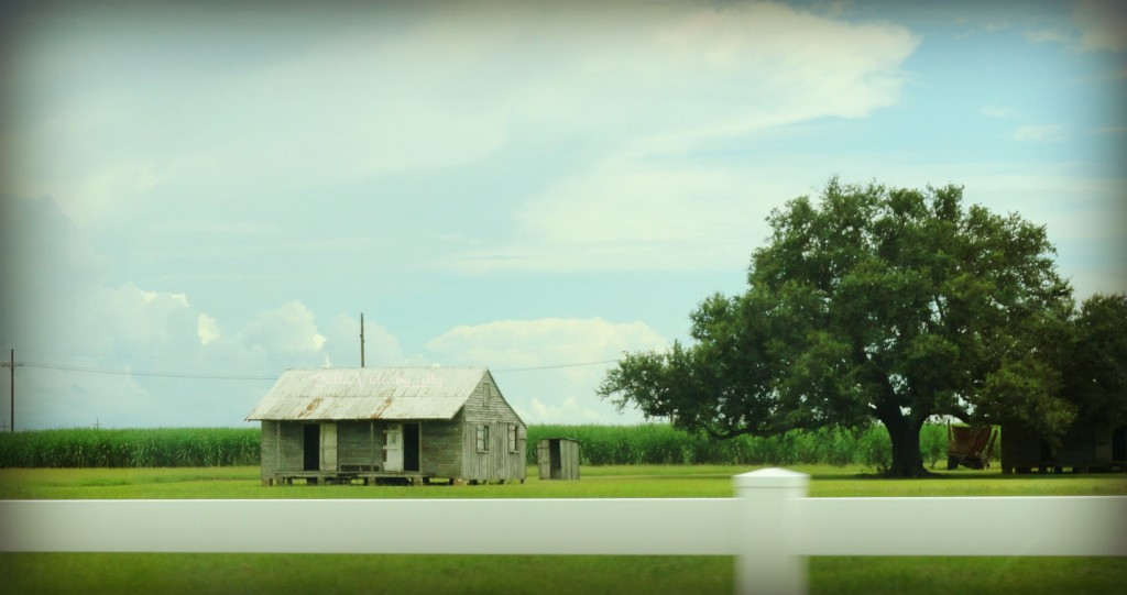 shack off river road in Louisiana