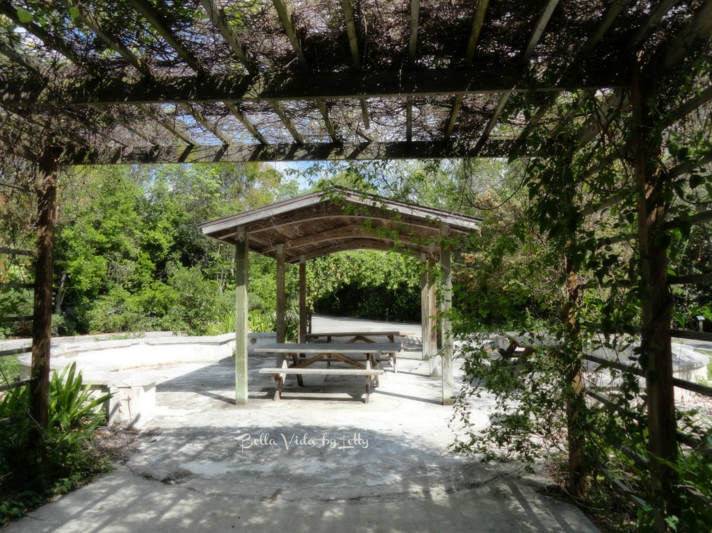 Dagny Johnson Key Largo Hammock Botanical State Park